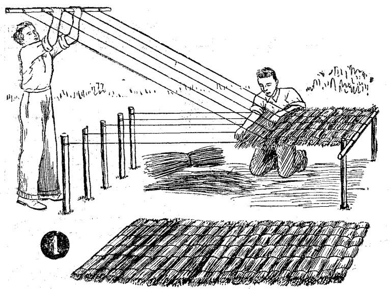 Come fare tetti di paglia o di canna - 1